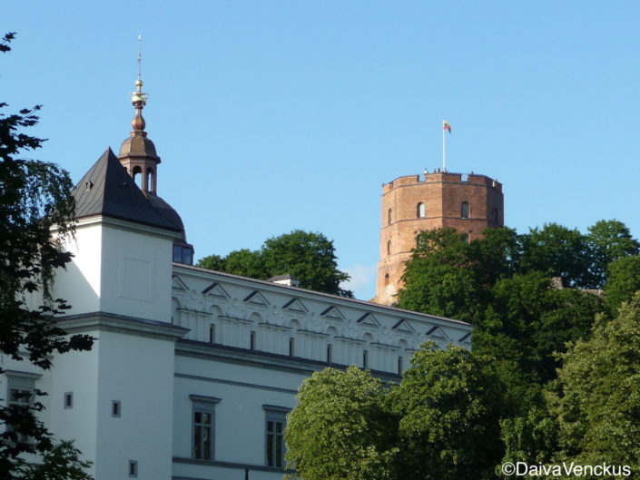 The new view of Gediminas Tower